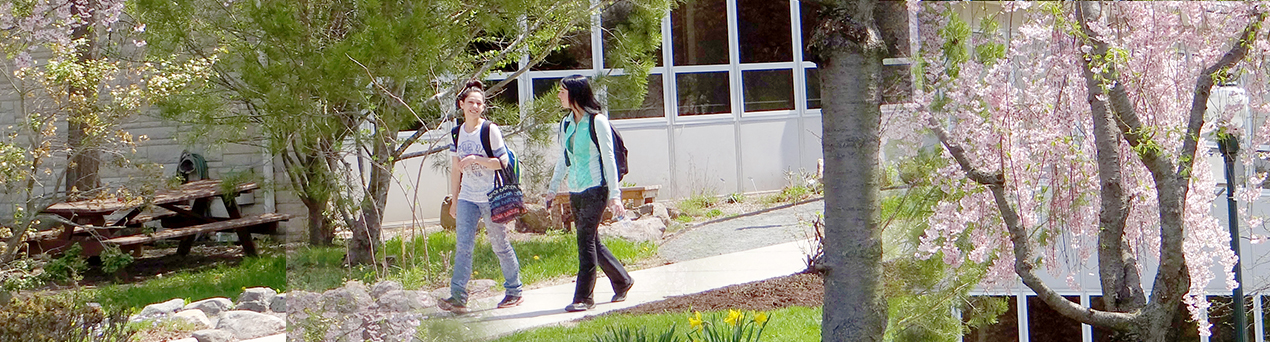 Students walking on Middletown campus
