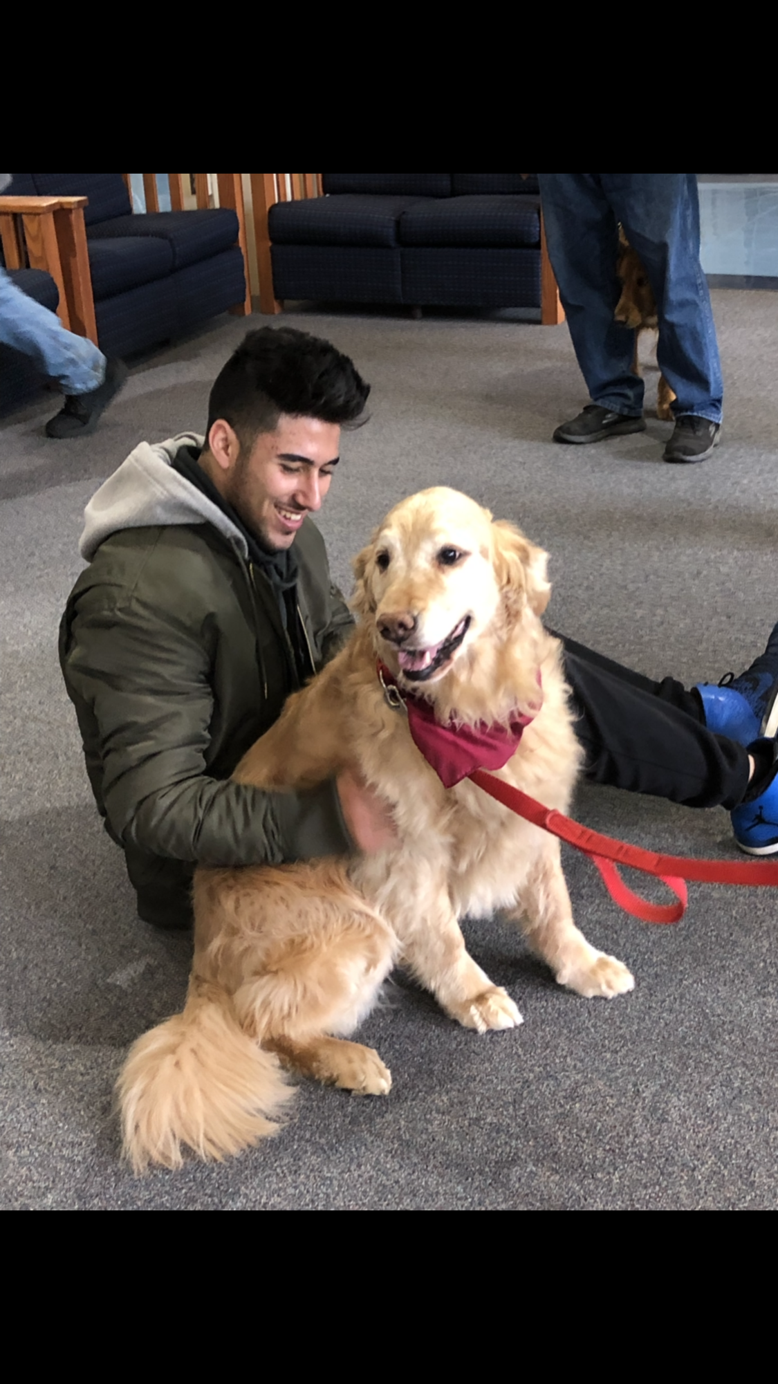 Stress Free Zone featuring: Therapy Dogs
