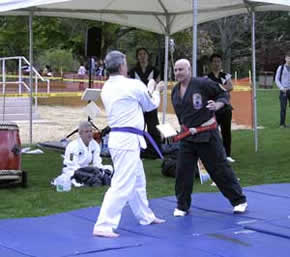 Photo: martial arts demonstration 2
