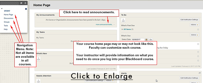 Sample Blackboard Course Home Page