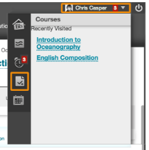 Blackboard Grade Report Icon - page with a checkmark
